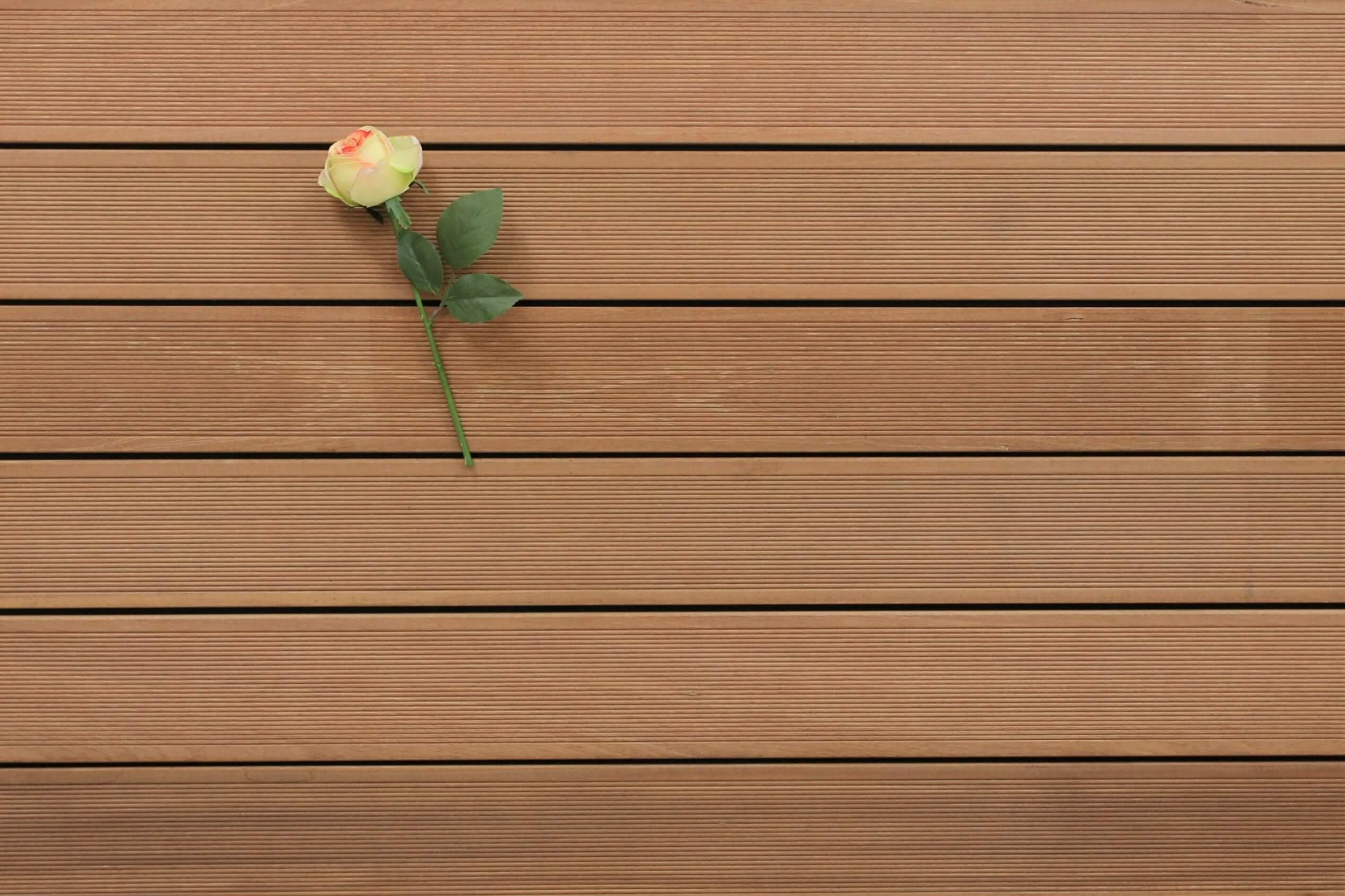 Holzterrasse Bangkirai, 25 x 145 bis 4880 mm, fein gerillt, 10,50 €/lfm, Premium (KD)